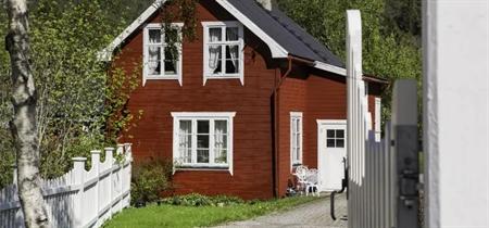 Image of   Hvad er forskellen på vandbaseret og oliebaseret maling?