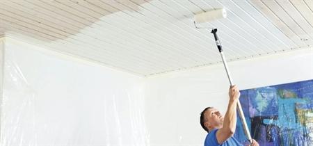 Image of   Sådan maler du trælofter